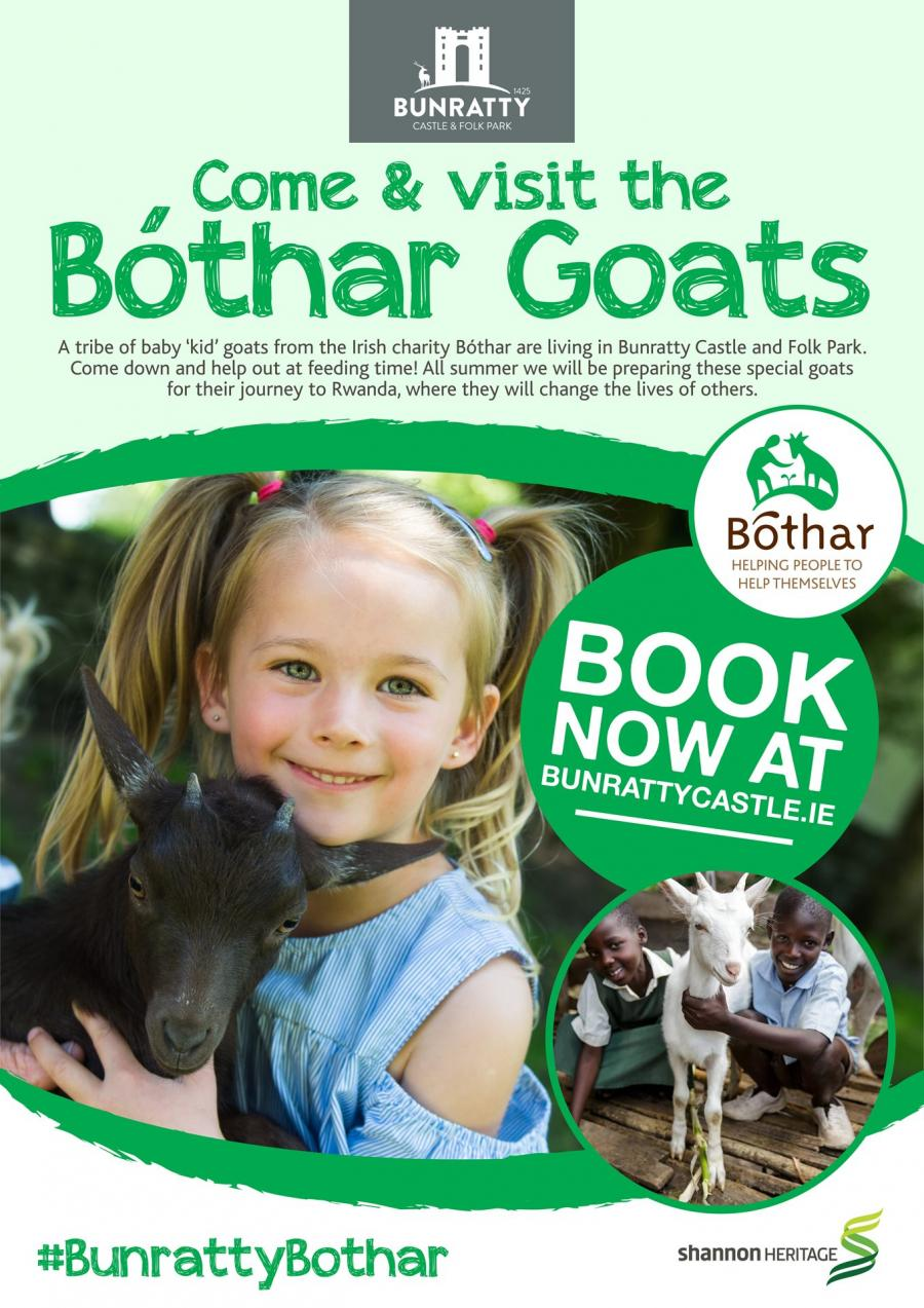 Bunratty Goats Poster