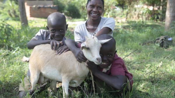 Gift of an in-kid dairy goat