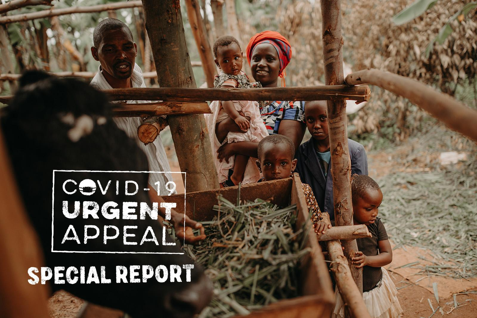 Covid-19 Urgent Appeal Special Report